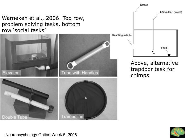 Warneken et al., 2006. Top row, problem solving tasks, bottom row 'social tasks'