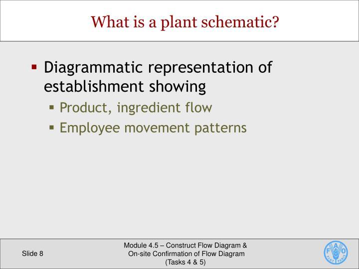 Diagrammatic representation of establishment showing