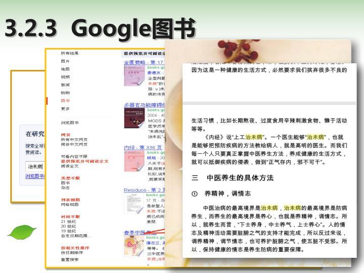 3.2.3  Google