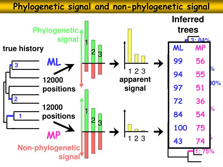 Phylogenetic signal and non-phylogenetic signal