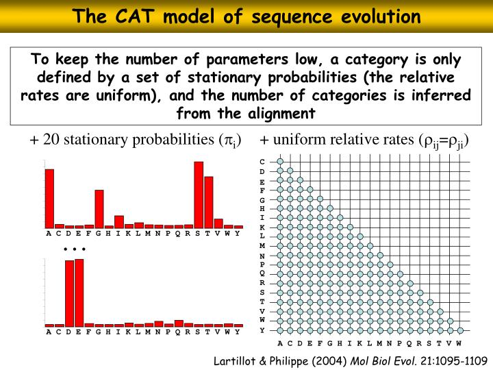 The CAT model of sequence evolution