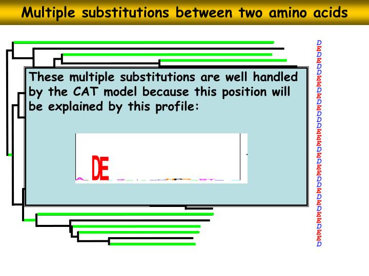 Multiple substitutions between two amino acids