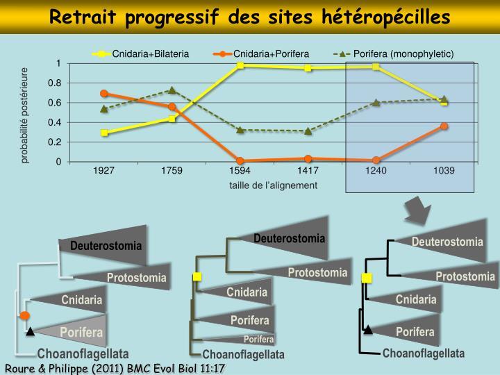 Retrait progressif des sites hétéropécilles