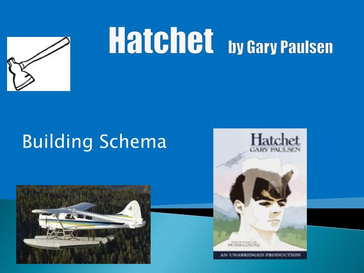 hatchet by gary paulsen n.