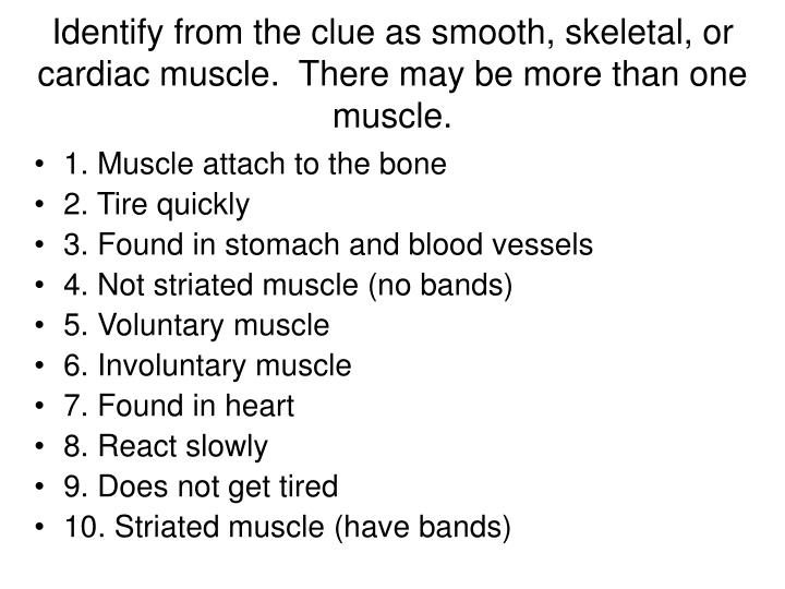 Identify from the clue as smooth, skeletal, or cardiac muscle.  There may be more than one muscle.