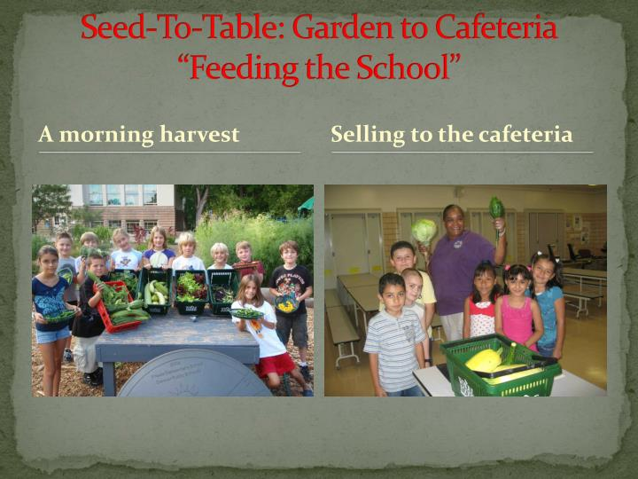 Seed-To-Table: Garden to Cafeteria