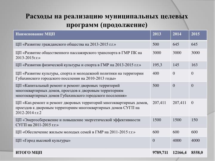 Расходы на реализацию муниципальных целевых программ (продолжение)