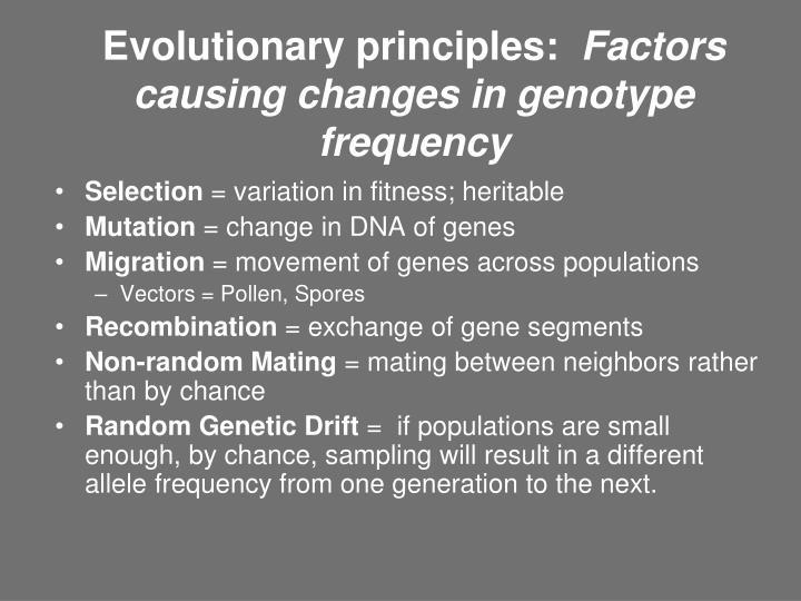 Evolutionary principles: