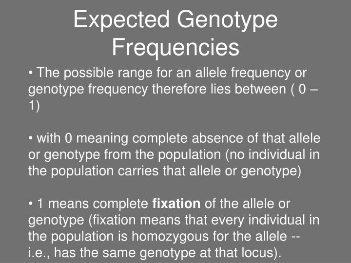 Expected Genotype Frequencies