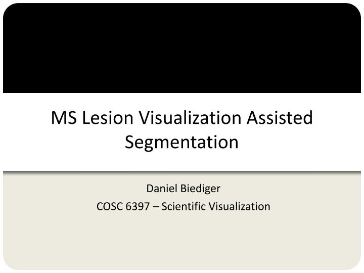 ms lesion visualization assisted segmentation n.