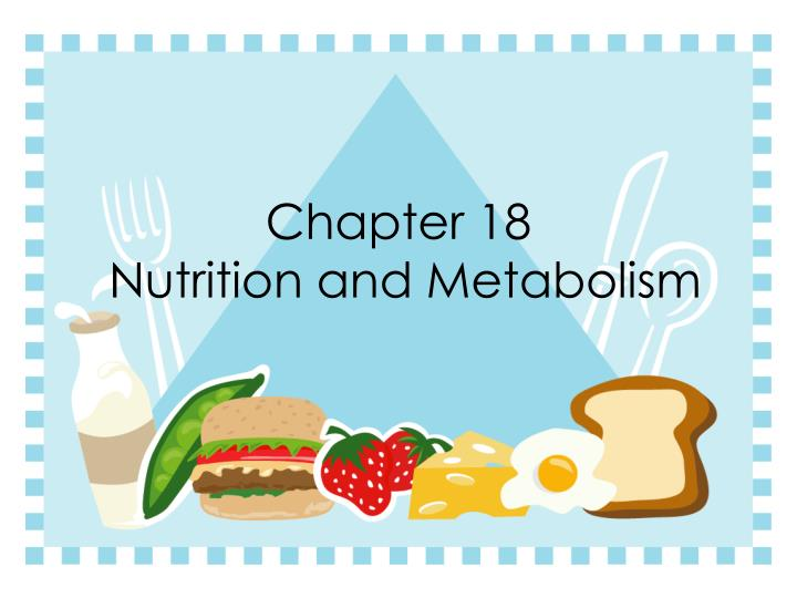 chapter 18 nutrition and metabolism n.