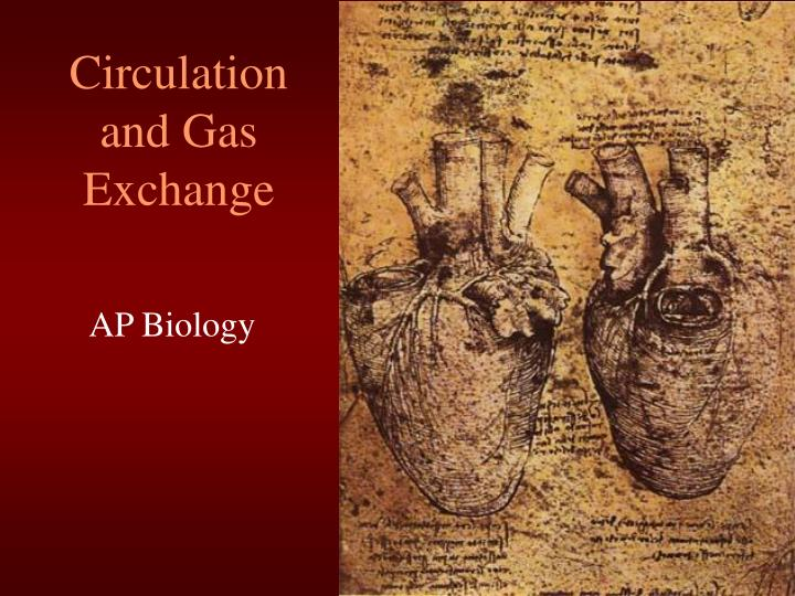 ap biology circulatory system essay questions Past ap biology exam essay topics molecules and cells (25%) evolution of the circulatory system: respiratory/digestive system structures that.