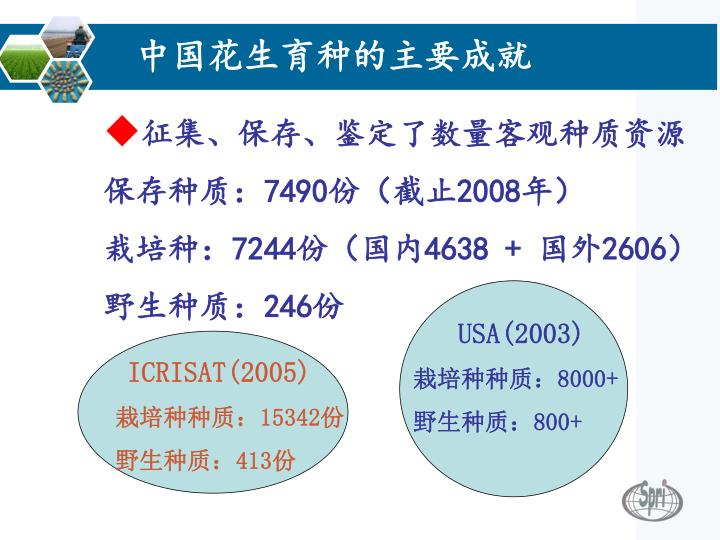 中国花生育种的主要成就
