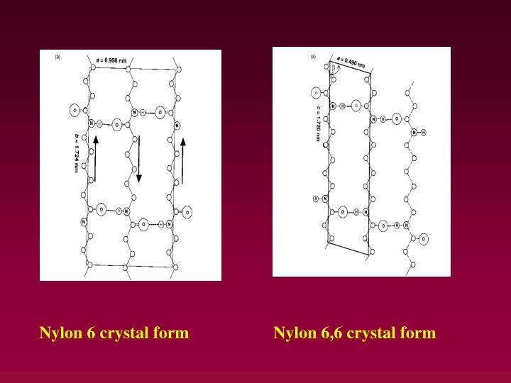 Nylon 6 crystal form
