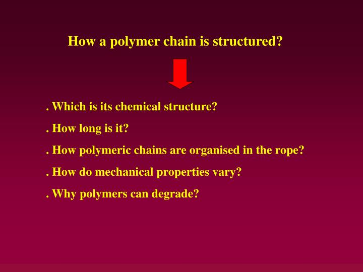 How a polymer chain is structured?