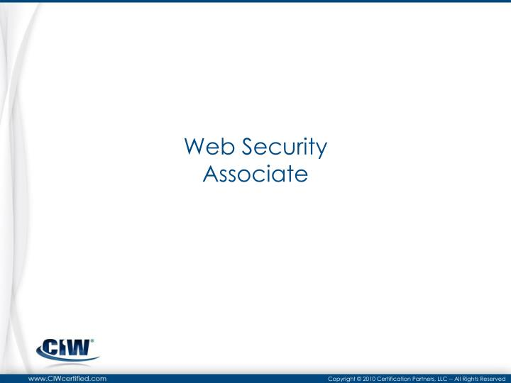web security associate n.