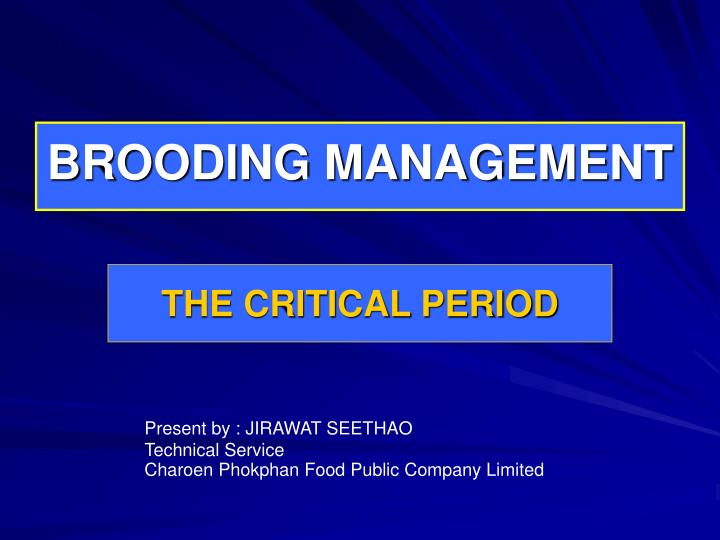 PPT - BROODING MANAGEMENT PowerPoint Presentation - ID:6144179