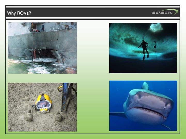 Why ROVs?