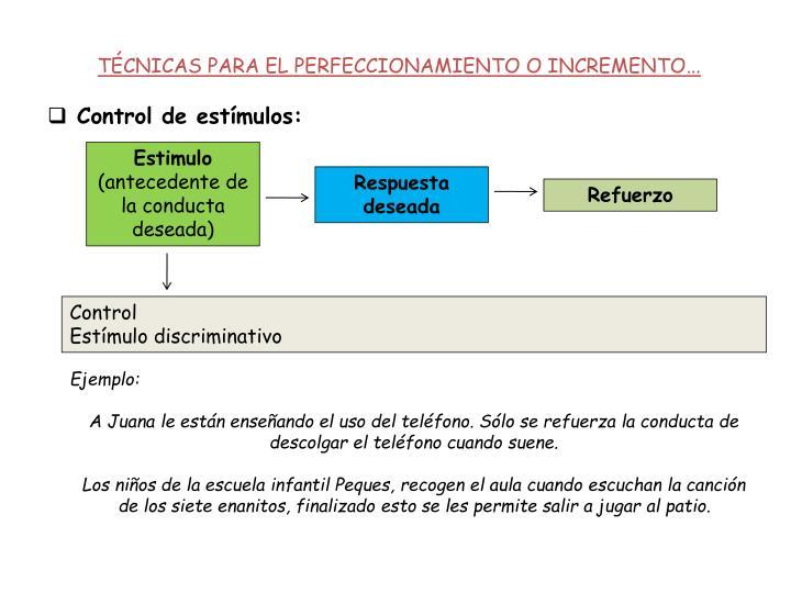 TÉCNICAS PARA EL PERFECCIONAMIENTO O INCREMENTO