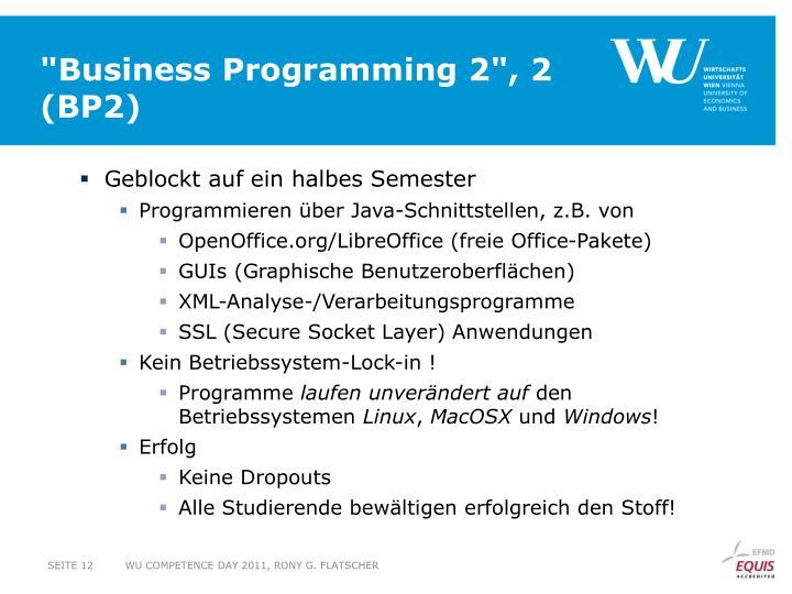 """Business Programming 2"", 2"