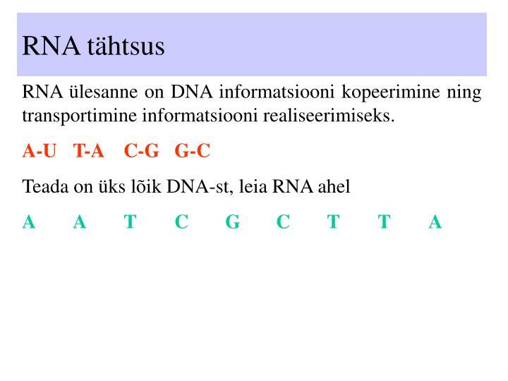RNA tähtsus
