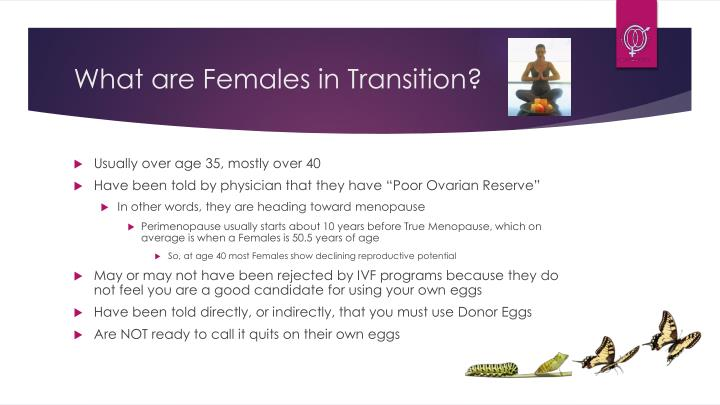 What are females in transition