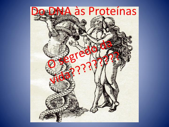 do dna s prote nas n.