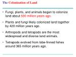 the colonization of land