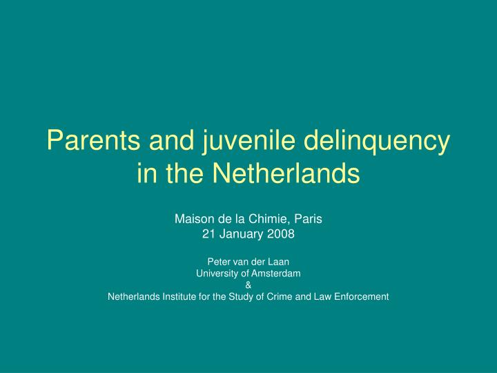 parents and juvenile delinquency in the netherlands n.