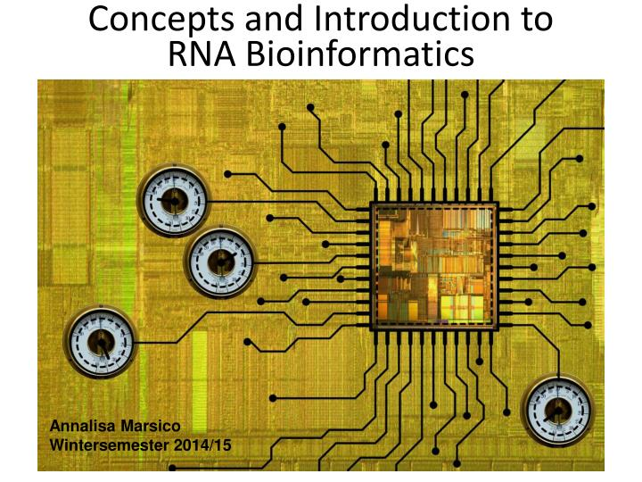 concepts and introduction to rna bioinformatics n.
