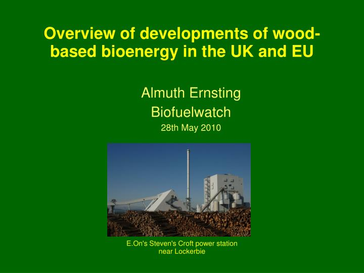 almuth ernsting biofuelwatch 28th may 2010 n.