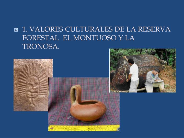 1. VALORES CULTURALES DE LA RESERVA FORESTAL  EL MONTUOSO Y LA TRONOSA.