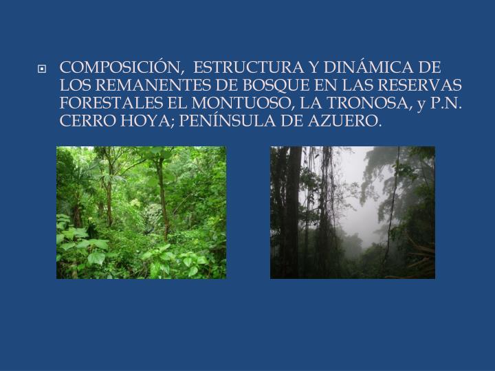 COMPOSICIÓN,  ESTRUCTURA Y DINÁMICA DE LOS REMANENTES DE BOSQUE EN LAS RESERVAS FORESTALES EL MONTUOSO, LA TRONOSA, y P.N. CERRO HOYA; PENÍNSULA DE AZUERO.