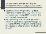 16 explain how foreign dna may be transferred into monocotyledonous plants
