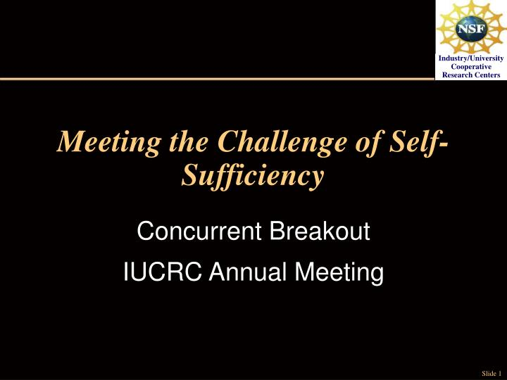 meeting the challenge of self sufficiency n.