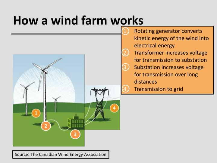 How a wind farm works