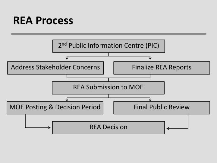 REA Process