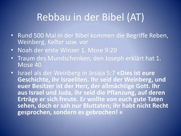 Rebbau in der Bibel (AT)