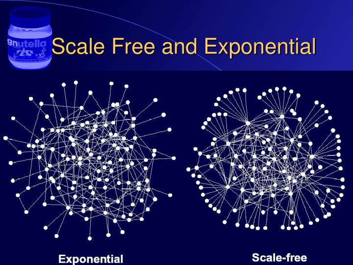 Scale Free and Exponential