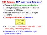 tcp futures tcp over long fat pipes