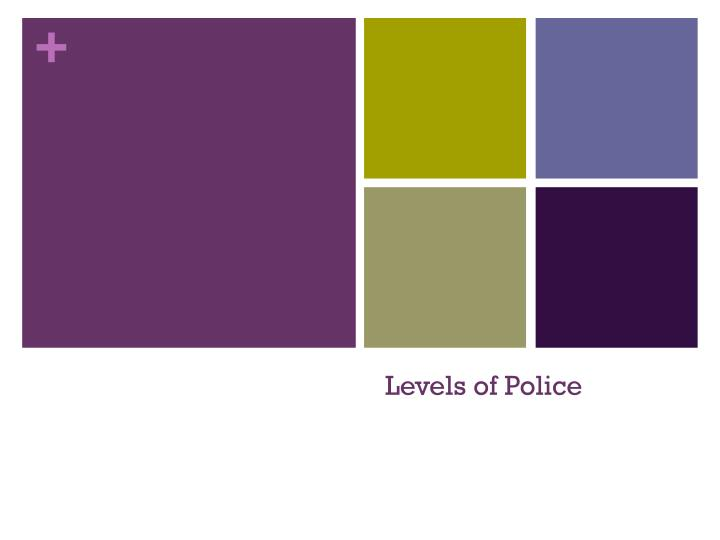 levels of police n.