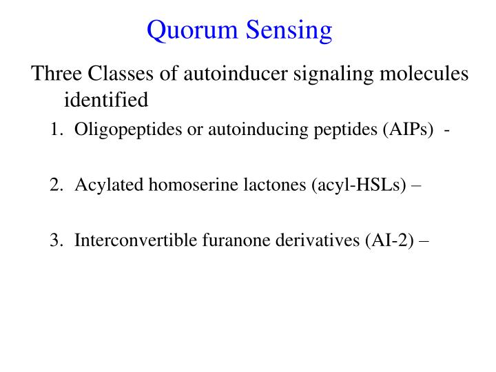 PPT - Quorum Sensing PowerPoint Presentation - ID:6155361
