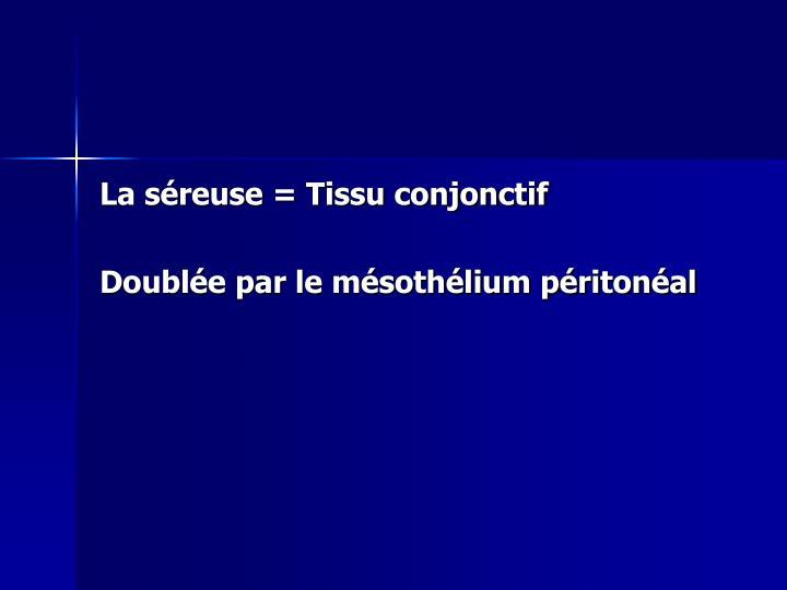 La séreuse = Tissu conjonctif