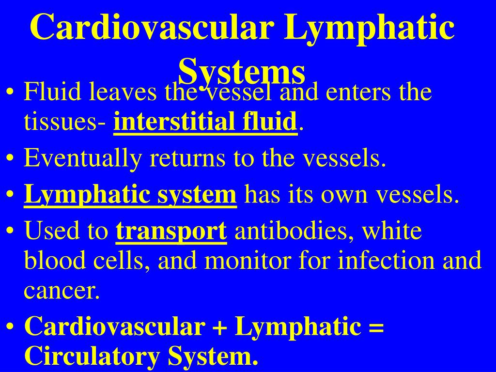 PPT - Cardiovascular System Chapters 19 Blood PowerPoint ...