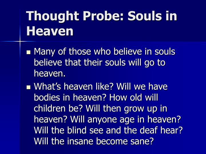 Thought Probe: Souls in Heaven