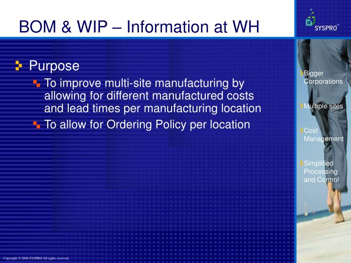BOM & WIP – Information at WH