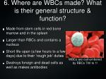 6 where are wbcs made what is their general structure function