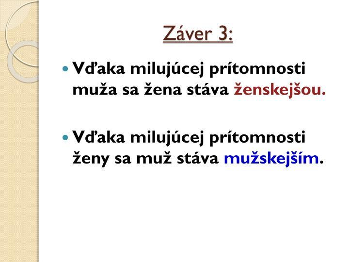 Záver 3: