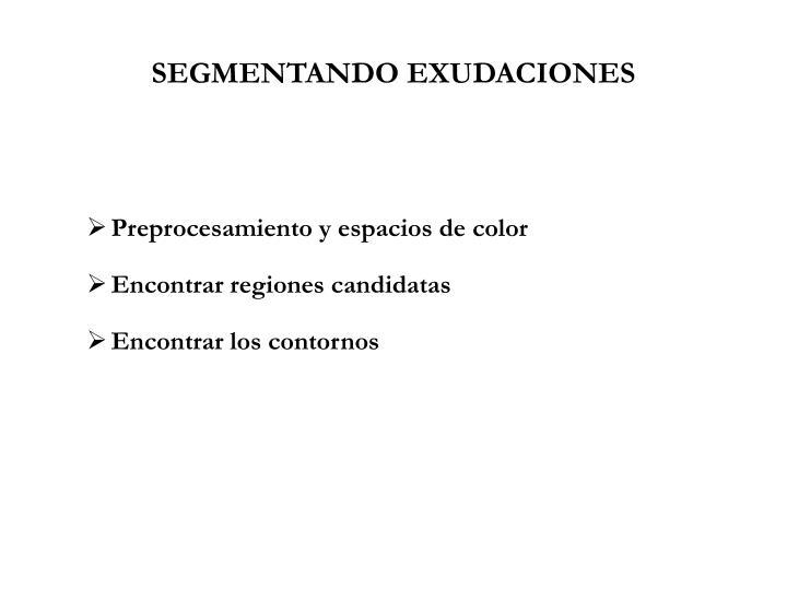SEGMENTANDO EXUDACIONES