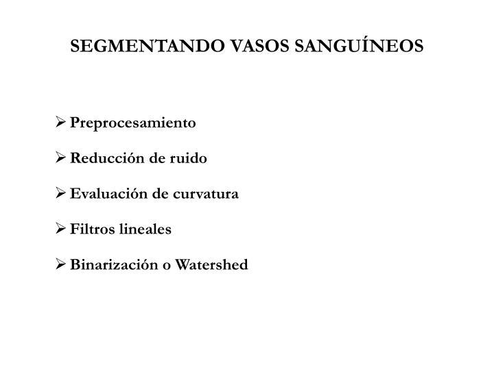 SEGMENTANDO VASOS SANGUÍNEOS